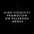 HIGH VISIBILITY PROMOTION ON FACEBOOK GROUP